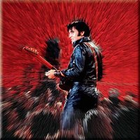 Elvis Presley magneet - Shine