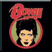 David Bowie magneet Flash